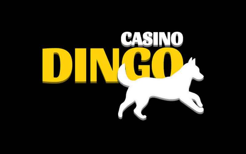 casino-dingo Logo